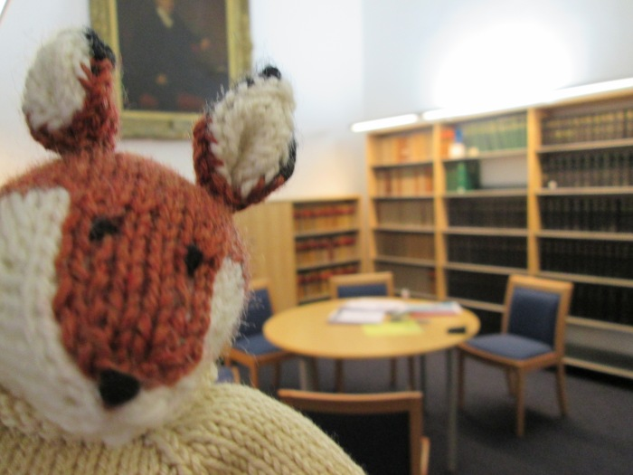 Fintan fox in the library 002